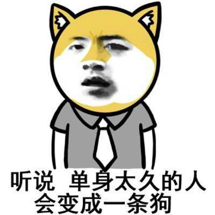 """""""激情卖菜哥""""意外成网红!图片"""
