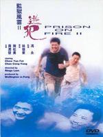 监狱风云2:逃犯 粤语版