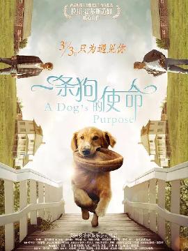 一条狗的使命-国