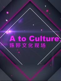 《姝婷文化现场》第一季