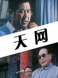 天网(1994)
