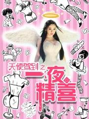 《天使驾到之一夜精喜》-预告片