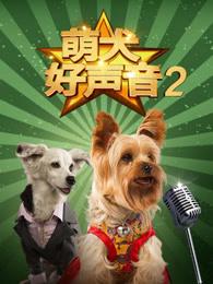 萌犬好声音2
