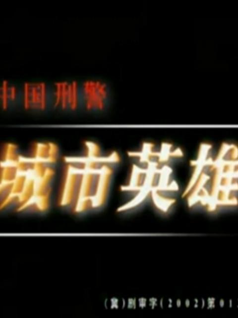 中国刑警之城市英雄