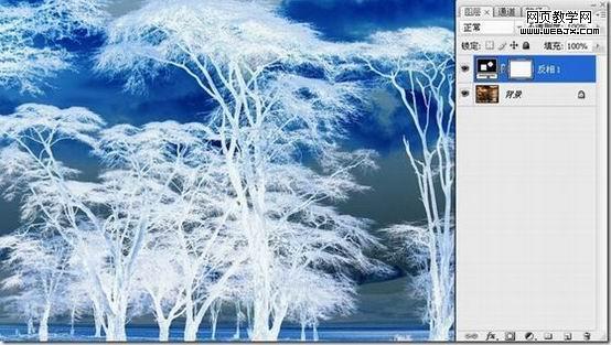 photoshop抠图教程-利用反相操作抠出复杂树木