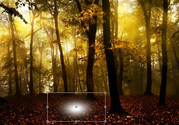 Photoshop给树林图片加上高清的投射光束